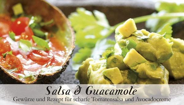 Gewürzkästchen Salsa & Guacamole